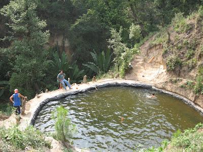 Tilapia en guatemala inicio del proyecto for Proyecto de tilapia en estanques