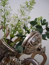 Vacker vit syrenkvist