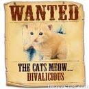 DIVALICIOUS!!!!!!!!!!!!!!!!