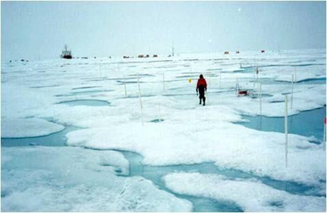 Degelo dos glaciares consequencias