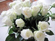 Kvite roser