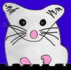 Blog Rat