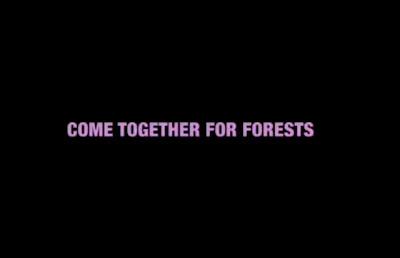 Greenpeace : new video Forestlove, Come together for forests - Forestlove, le nouveau clip de Greenpeace - Terre natale, le blog du Développement durable - Thierry Follain, rédacteur : 06 87 29 38 73