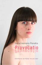 Provocatio (Premio Ana de Valle - Ayto. de Avilés, 2010)