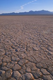 [tierras+aridas.jpg]
