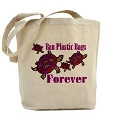 ban on plastic bags in india essay