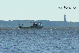 Watermen working carb pots Currituck Sound