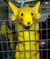 Pikachu mouse di dunia nyata