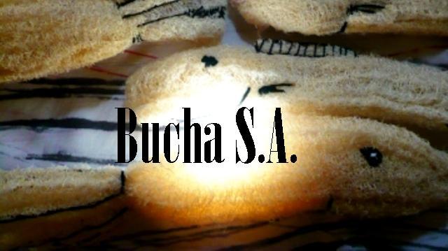 Bucha S.A.