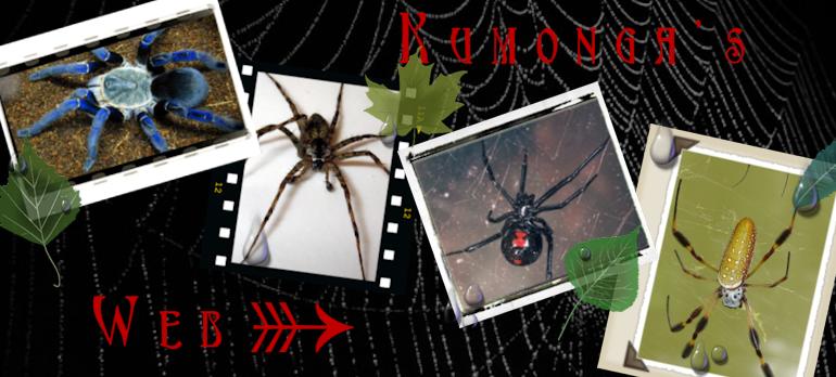 Kumonga's Web