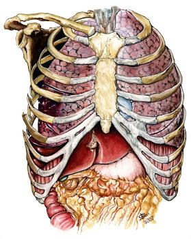 Hemopneumotórax
