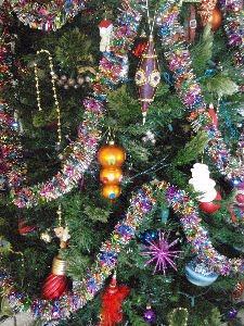 [Christmas+2.jpg]