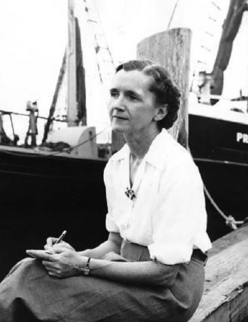 an autobiography of rachel carson an american writer Both became public events in a way that flabbergasted even the author strictly as a narrative biography more on rachel carson.