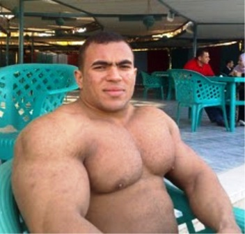 steroid forums big boards