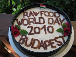 TORTÁIM: tej,tojás, liszt, cukor, állati fehérje mentes,sütés-főzés nélkül készültek.