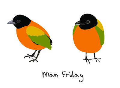 Man Friday, bird art of the day