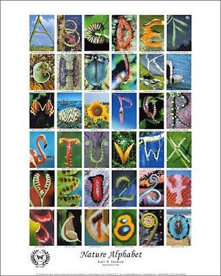 alphabet graffiti,graffiti alphabet,alphabet