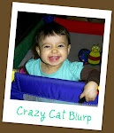Crazy Cat Blurp