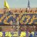 Tifo coréen
