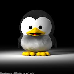 Proyecto de Socket en Linux
