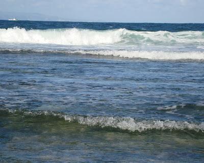 Indian Ocean. Waves