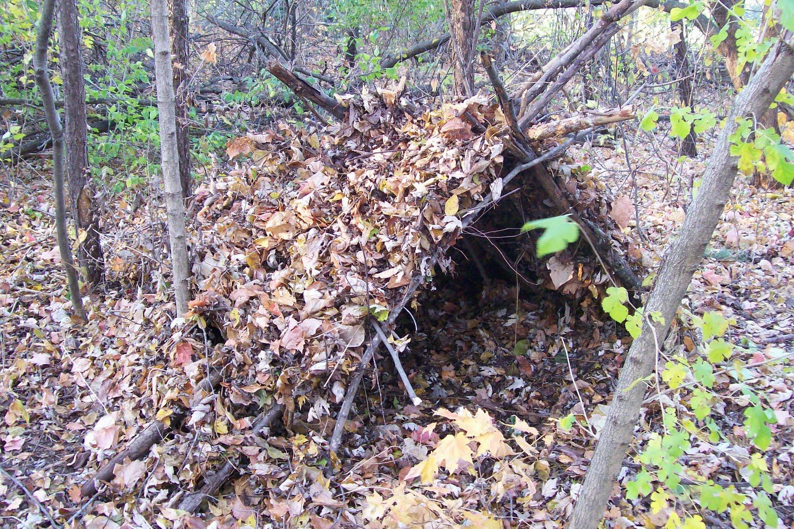 Bushcraft Plus: Shelter: Forest A-Frame