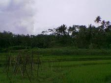 Desa Tuanan