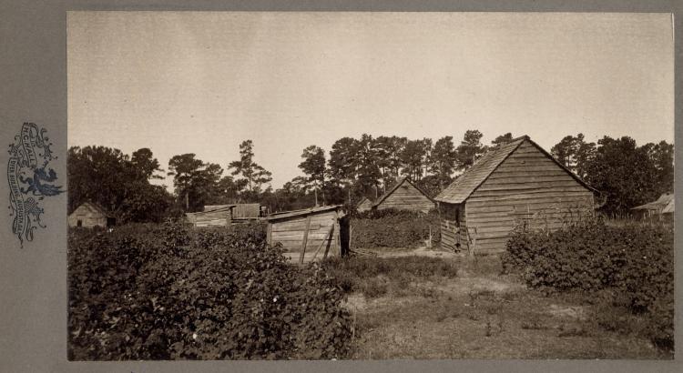 cabins in South Carolina