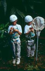 Os filhos de Meg Lowman - Filhos de peixe, peixinhos são...