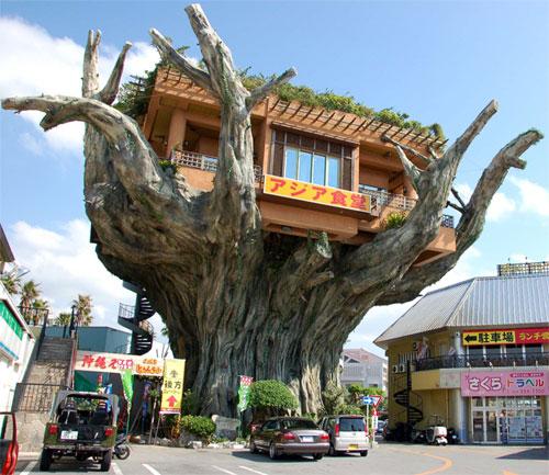 Okinawa Tree House - Restaurante suspenso que fica em frente ao Parque Onoyama, no sul do Japão.