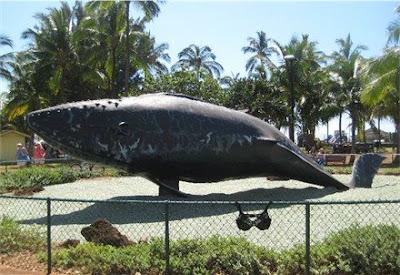 Kalama Park Whale and Olga, the Traveling Bra