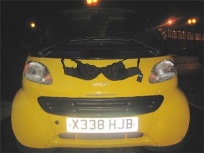 Olga, the Traveling Bra makes a Smart Car bra