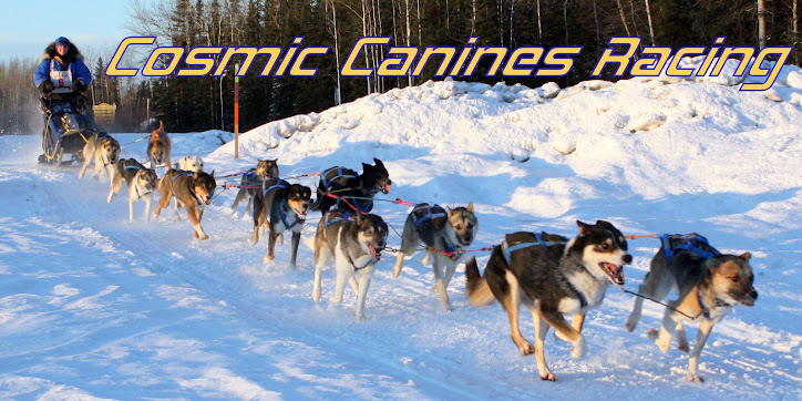 Cosmic Canines Racing