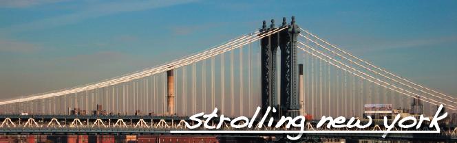 strolling new york