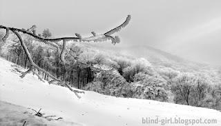 peisaj de iarna Piatra-Neamt