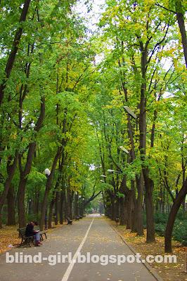 fall Copou Iasi Romania