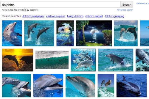 Google Images Standard view