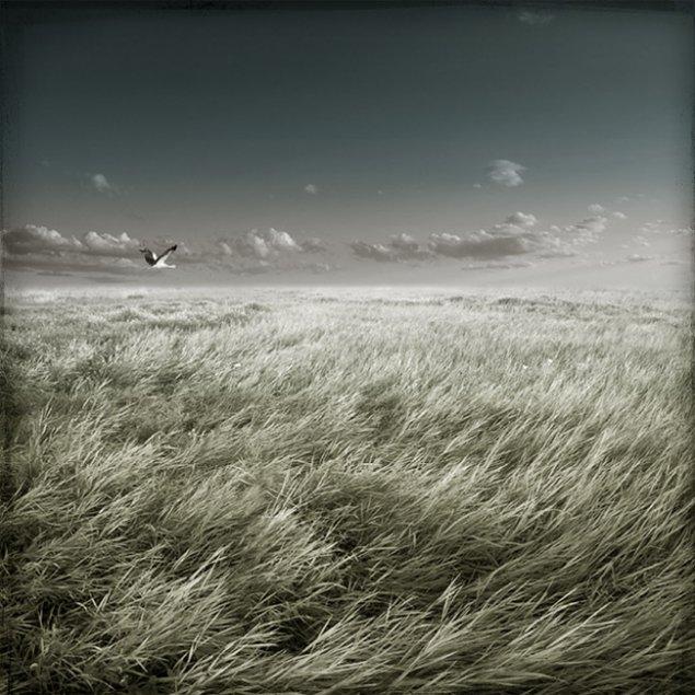 Photography and Photo manipulation by Igor Lihovidov