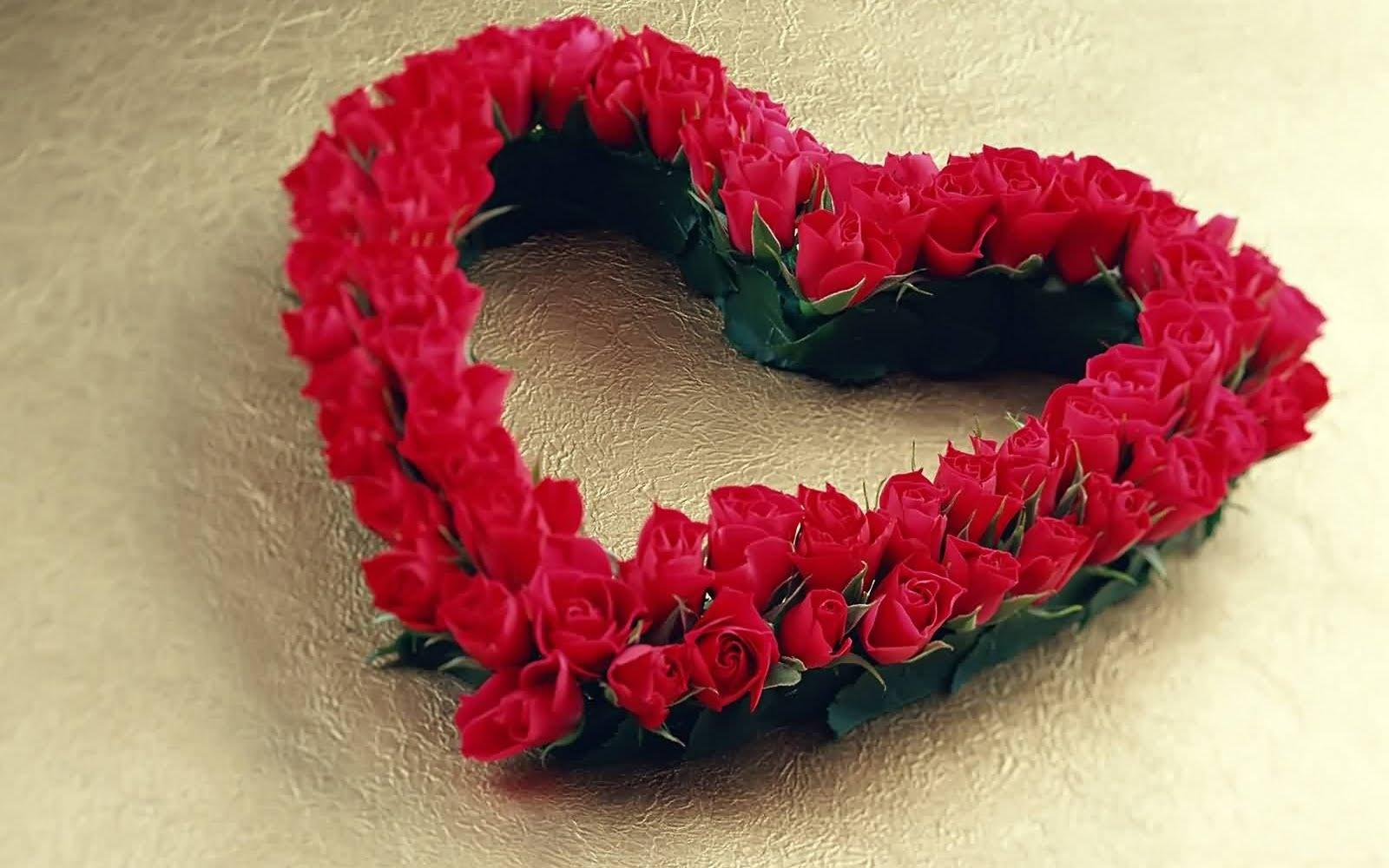 http://2.bp.blogspot.com/_3G4dg-GWVKI/SwZKyfVxnpI/AAAAAAAAECA/LxN1VXA9wXM/s1600/heart.jpg