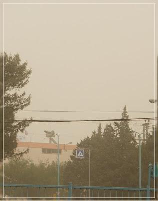 Погода в израиле