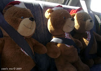 buckle up teddies