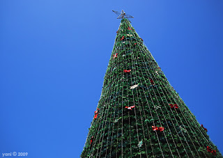 victoria square christmas tree