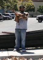 Hey Buddy, You wanna buy a puppy?