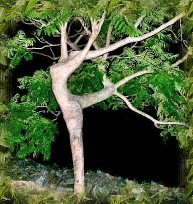 mujer bosque