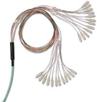 Trunk Cable Assemblies
