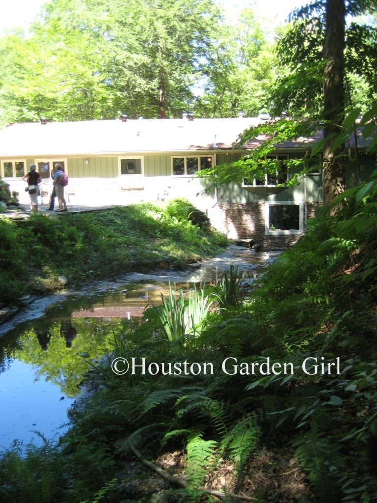 Houston Garden Girl July 2010