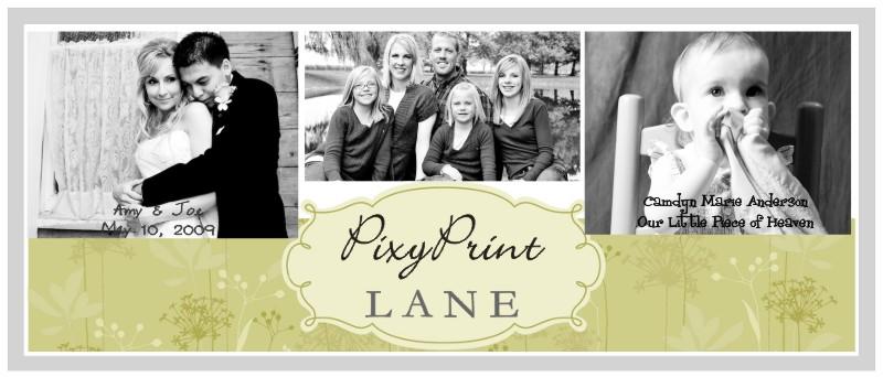 Pixy Print Lane