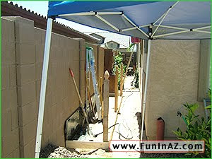 Have fun in your AZ garden