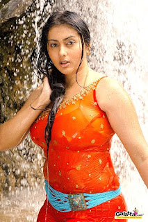 namitha sexy kollywood actress pictures 12122008