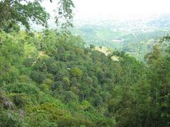 Mountainside, Babag Uno